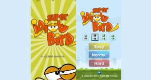 super idiot bird indir